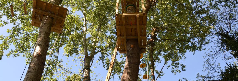 particolare della struttura sugli alberi